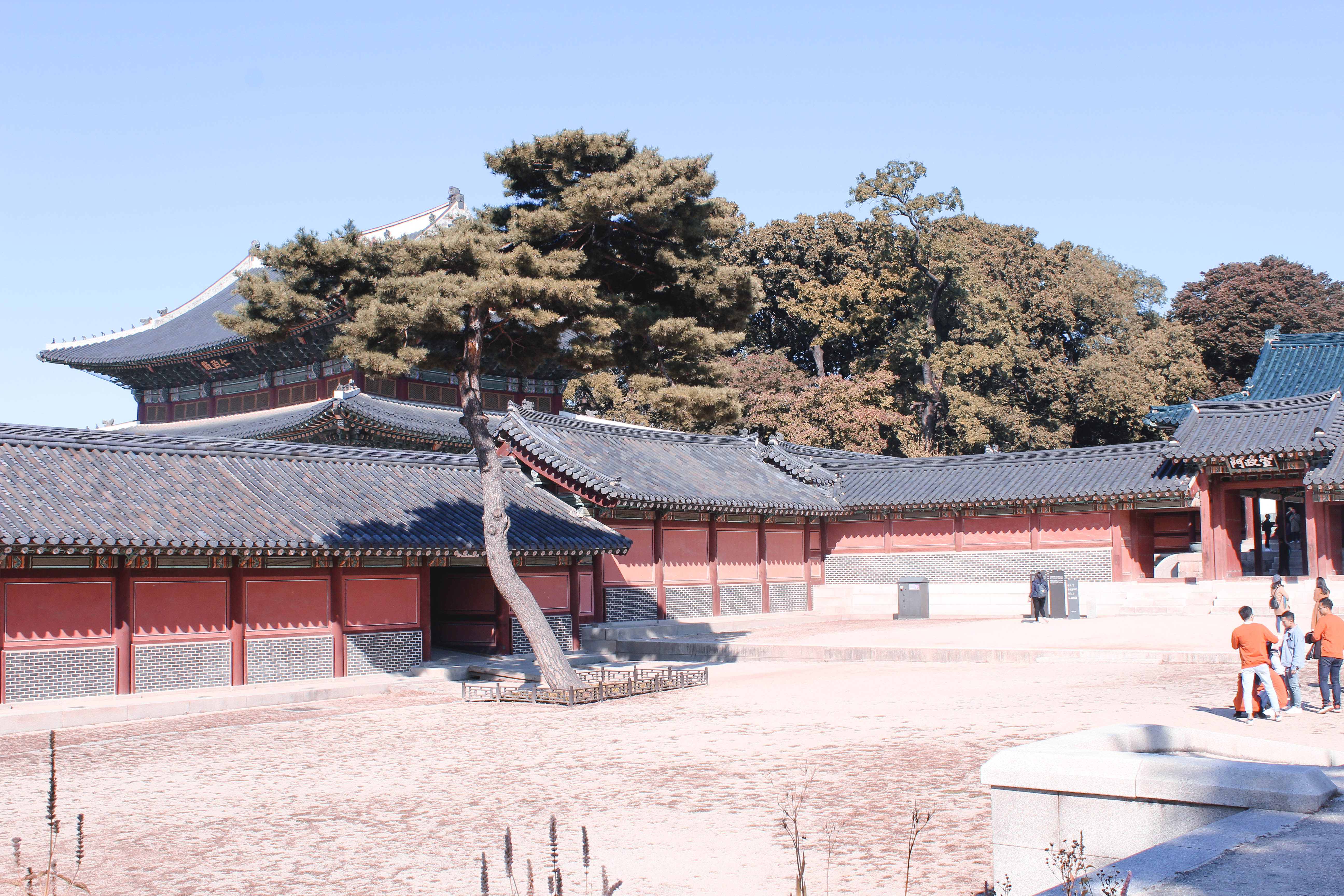 TD :: A Step Outside The City ::CHANGDEOKGUNG-03
