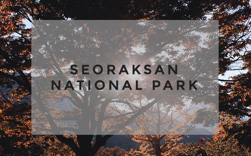 TD A Step Outside The City Seoraksan National Park-08