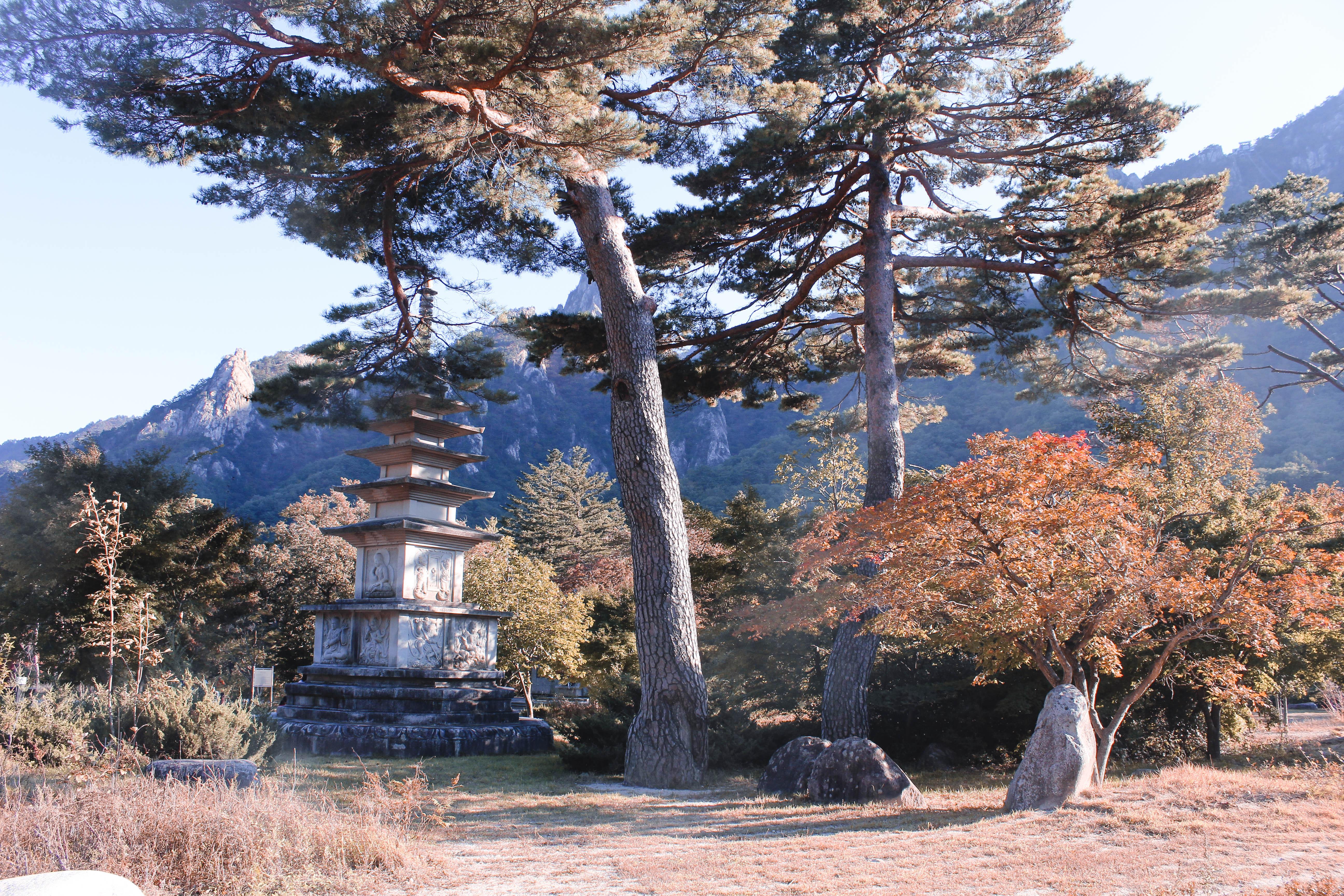 TD A Step Outside The City Seoraksan National Park-11