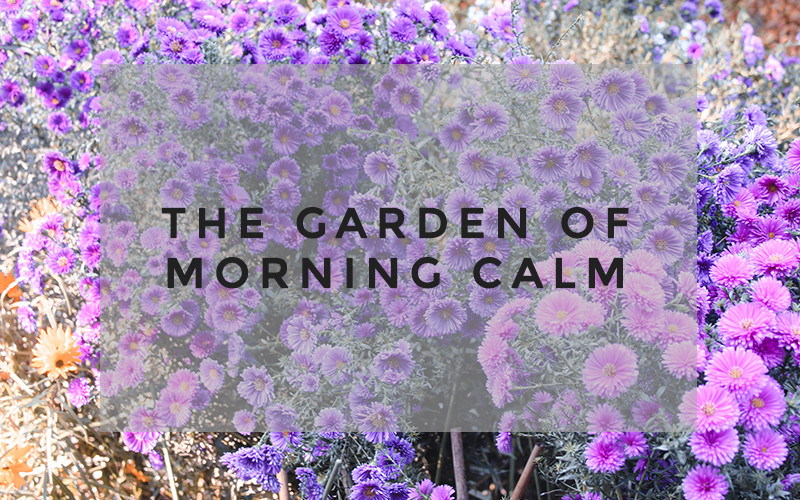 TD A Step Outside The City The Garden of Morning Calm -16